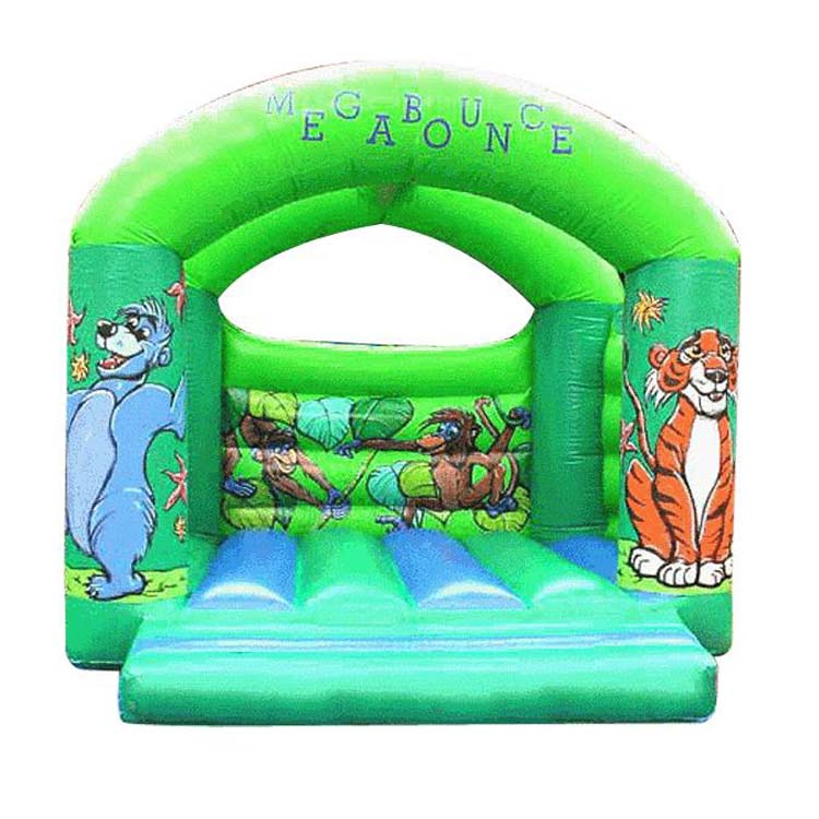 Inflatable Bounce FLBO-10054