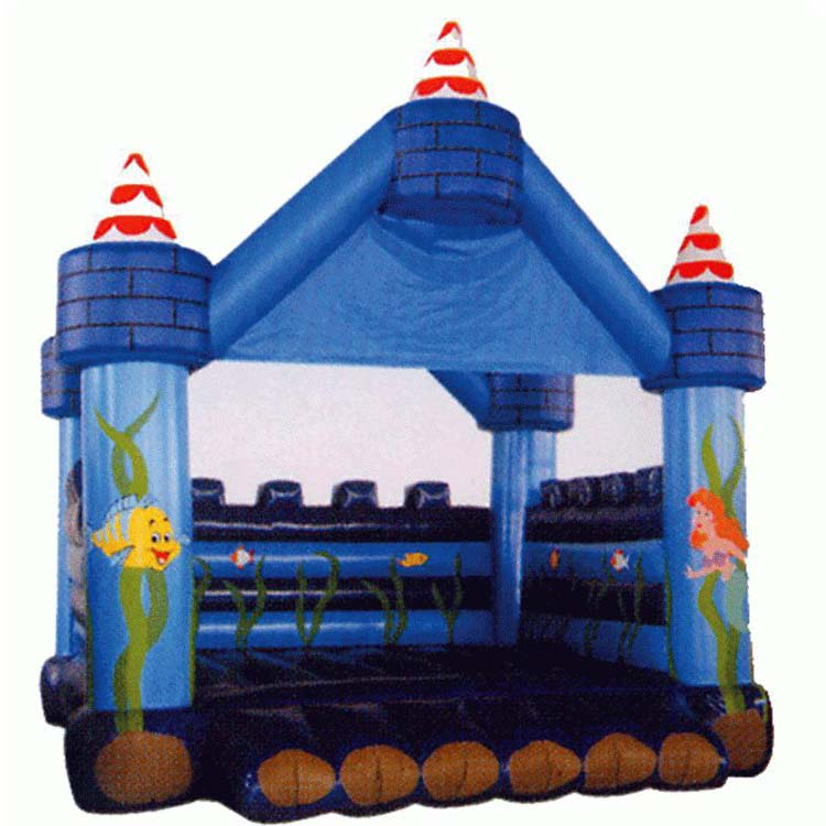 Inflatable Castle FLCA-A20019